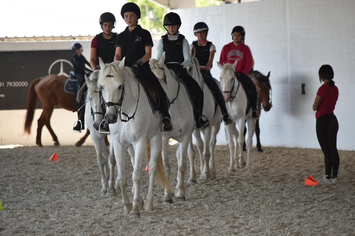 Que precisamos para las clases de equitacion en valencia