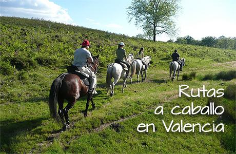EXCURSIONES A CABALLO en la Sierra Calderona